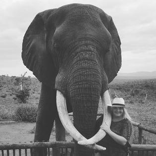 Bayete Zulu Elephant Interactions